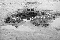 Photographie analogique noir et blanc, épreuve numérique pigmentaire - 80 x 120 cm